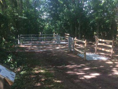 Einbau von Viehgittern mit Fußgängerüberwegungen